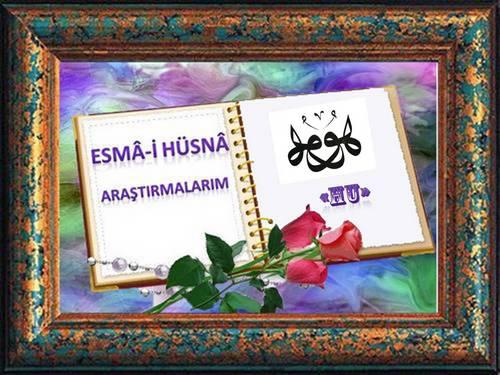 Resim1
